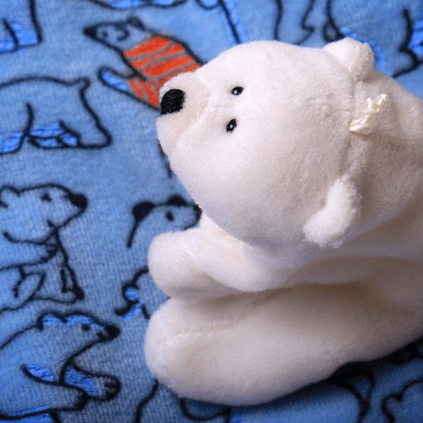 Podróż z dzieckiem na Arktykę bez wychodzenia z domu!